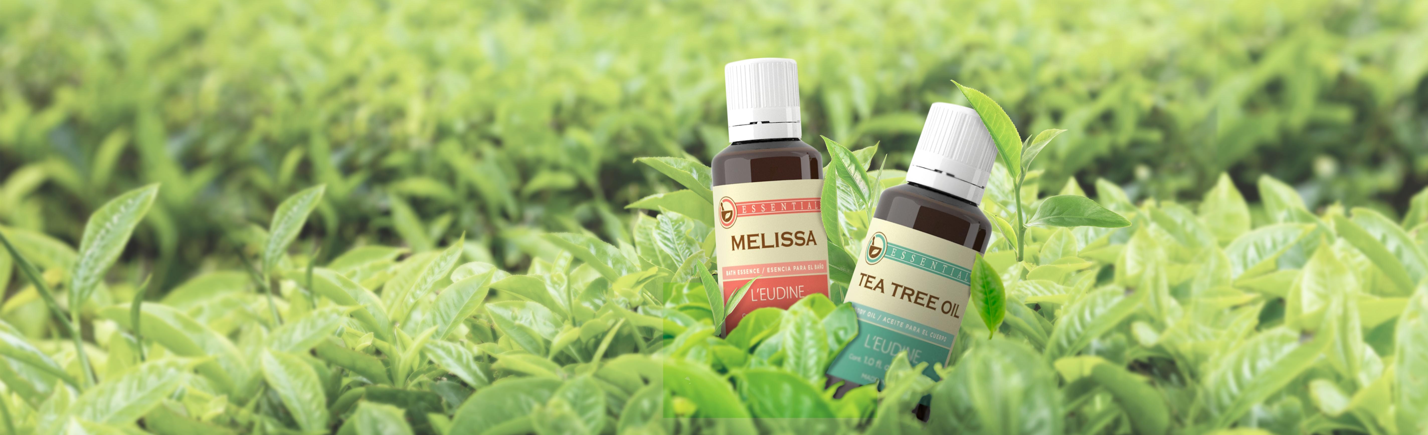 2-TEA_TREE-MELISSA
