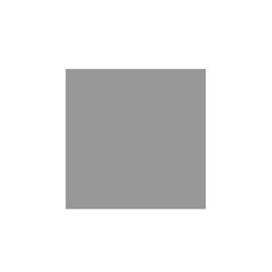logo-leudine-300px