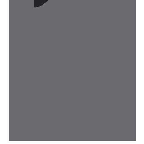 logo-leudine-oscuro-300px